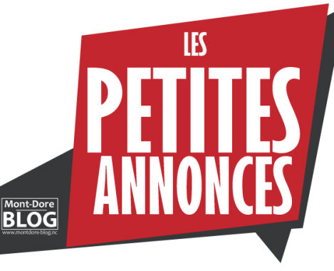 LOGO PETITES ANNONCES 01