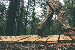 wood nature person walking 01 300x200 wood nature person walking 01