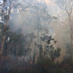 IMG 2435 mdb 150x150 FLASH INFO. Incendie : La route de Mouirange de nouveau ouverte
