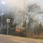 IMG 2437 mdb 150x150 FLASH INFO. Incendie : La route de Mouirange de nouveau ouverte