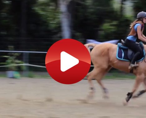 VIDEOS. Club Hippique La Cravache Mont Dore 6